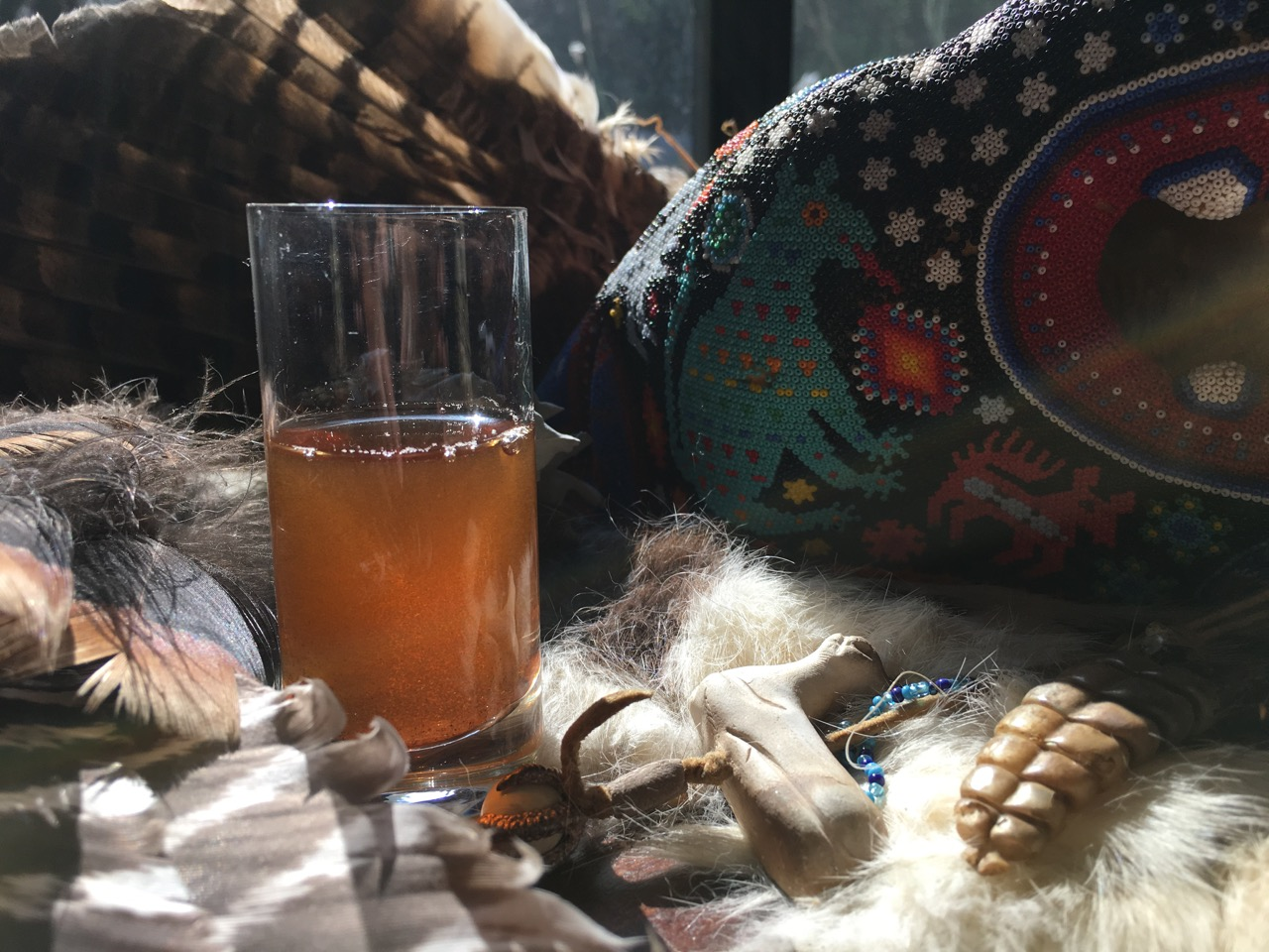 Sham-Shamans, Ayahuasca and the Desire for Power. Is your Shaman sketchy?